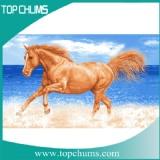 seahorse beach towel bt0292 horser water